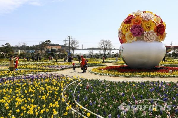 가족단위로 봄나들이 나와 꽃축제를 즐기는 관광객들이 많다.  사진/강종민 기자