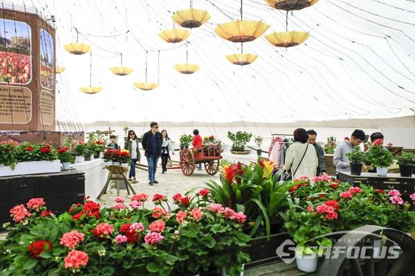 실내 테마 전시장에서는 실내 장식용 꽃도 판매한다.  사진/강종민 기자